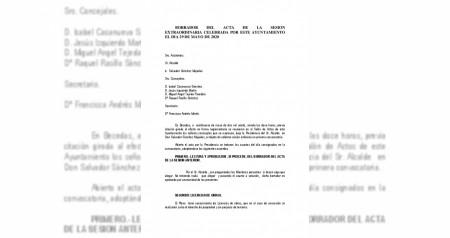 Pleno 29 de mayo de 2020
