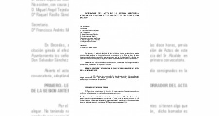 Pleno del 26-06-2020